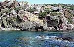 Felsküste - Behramkale