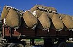 Baumwollsäcke - Aspendos