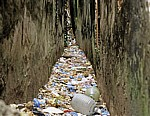 Stone Town: Müll - Zanzibar Town