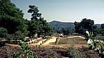 Ausgrabungsgelände - Olympia