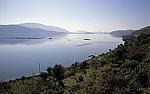 Muschelzucht - Butrint-See