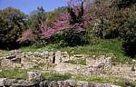 Auf dem Weg zur Agora - Butrint