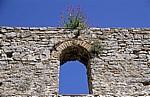 Frühchristliche Basilika: Fensternische mit Blumen - Butrint