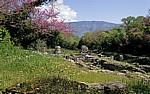 Blick auf die Agora - Butrint