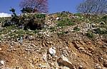 Straße Sarandë - Vlorë: Müll - Albanische Riviera