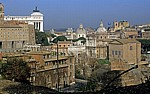 Blick vom Palatin - Rom
