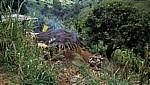 Farm eines Subsistenzbauern - Chimanimani Mountains