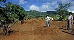 Straßenbau - Provinz Manica
