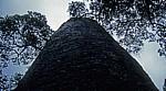 Great Enclosure (Große Einfriedung): Konischer Turm - Great Zimbabwe Ruins