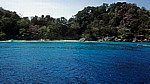 Insel Nummer acht (Ko Paed) - Similan Islands
