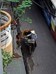 Altstadt: Blumenverkäuferin - Hanoi