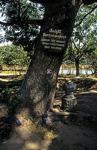 Killing Fields von Choeung Ek: Exekutionsbaum für Kinder - Phnom Penh