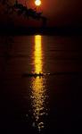 Boot im Sonnenuntergang - Kratie