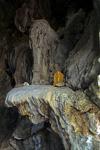 Buddhastatue in einer Höhle neben einem steinernen Elefanten - Vang Vieng