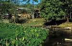Leben am Fluß - Vang Vieng