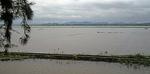 Reisfelder - Hue