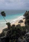 Palmen und Strand am Karibischen Meer - Tulum