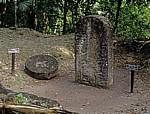 Altar (links) und Stele (rechts) - Tikal