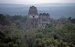 Blick von Tempel IV: (von links) Tempel I und II - Tikal