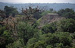Blick von Tempel IV: Mundo Perdido (Verlorene Welt) - Tikal