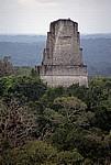 Blick von Tempel IV: Tempel III - Tikal