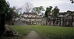 Acropolis Central (Zentrale Akropolis) - Tikal