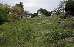 Acropolis del Norte (Nord-Akropolis) - Tikal