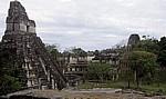 Blick von der Acropolis del Norte (Nord-Akropolis): Acropolis Central (Zentrale Akropolis) - Tikal
