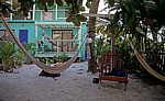 Tina's Backpacker's: Garten - Caye Caulker