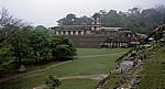 Blick vom Templo de la Calavera (Totenkopf-Tempel) - Palenque