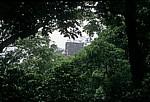Blick auf einen Dachkamm - Palenque