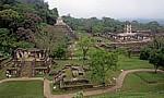 Blick von der Plaza de la Cruz (Kreuzgruppe) - Palenque