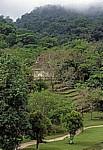 Blick von El Palacio (Palast): Templo del Conte (Tempel des Grafen) - Palenque