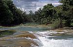 Reserva Biósfera Cascadas Agua Azul: Rio Yax - Agua Azul