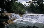 Reserva Biósfera Cascadas Agua Azul: Cascadas - Agua Azul