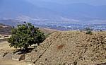 Blick von der Plataforma Sur (Südplattform): Oaxaca - Monte Albán