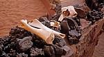 Ar Rak'a: Kamelknochen - Wadi Rum