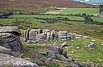 Dartmoor National Park (Devon)