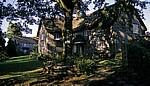 Cottage - Devon
