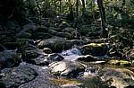 Wasserfall - Exmoor