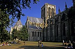 Minster (Münster)  - York