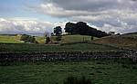 Typische Landschaft der Dales - Yorkshire Dales