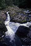 River Dee - Banchory