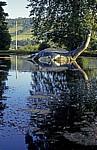 Loch Ness Monster Information Centre: Nessie  - Loch Ness