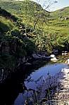 Wasserlauf im schottischen Hochland  - Fort William