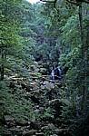 Lodore Falls (Wasserfall) - Lake District
