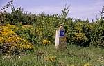 Jakobsweg (Navarrischer Weg): Wegweiser für den Camino - Sierra del Perdón