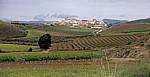Jakobsweg (Camino Francés): Cirauqui - Navarra