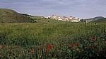 Jakobsweg (Camino Francés): Felder  - Navarra