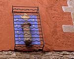 Jakobsmuschel an einer Hauswand - Cirauqui